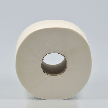 latrine: Single roll of toilet paper on neutral background