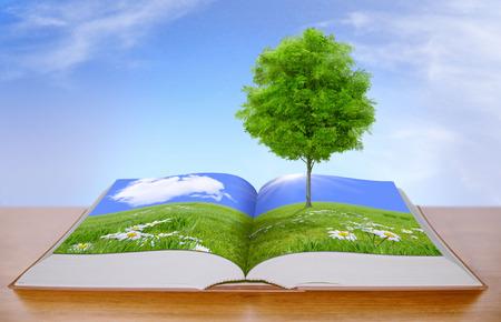 青い空と緑の牧草地のツリー
