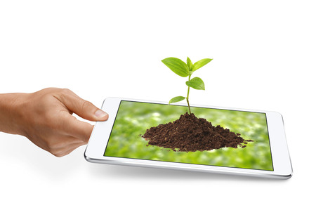 sust hand a tablet with sprout on blurry green background