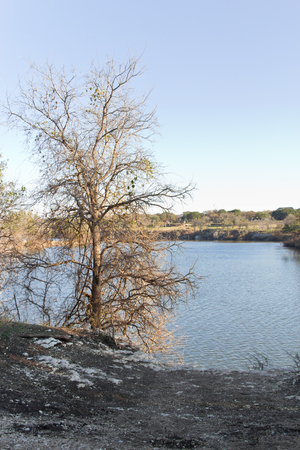 rock creek: Trees, rock and river at Brushy Creek Regional Trail. Stock Photo