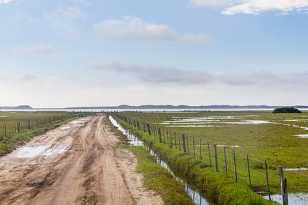 Dirty road to lagoa do peixe lake, Tavares, Rio Grande do Sul