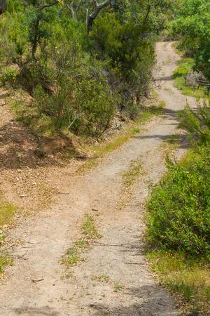 alentejo: Trail in Santiago do Cacem, Alentejo, Portugal