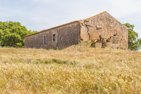 alentejo: Abandoned farm house and plantation in Santiago do Cacem, Alentejo, Portugal