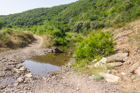 Flooded road and forest in Carrapateira, Algarve, Portugal Stock Photo