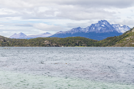 Forest, mountain and beagle channel in Coast Trail, Tierra del Fuego National Park, Ushuaia, Argentina
