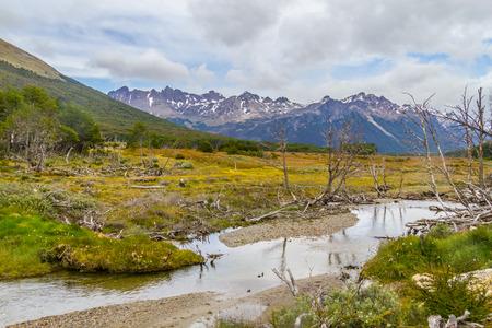 Laguna Esmeralda trail with forest, stream and mountains, Ushuaia, Patagonia, Argentina Banco de Imagens - 95806785