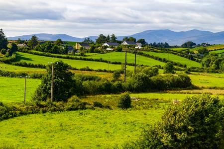 Farm field in Greenway route from Castlebar to Westport, Ireland