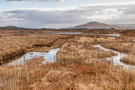 Conemara bogs with mountains in background, Maam Cross, Galway, Ireland Imagens