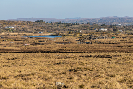 Farms with Bog, vegetation and lake, Clifden, Galway, Conemara, Ireland