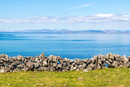 Flowered Farm field with rock walls and Galway bay in background in Inishmore, Aran Islands, Ireland