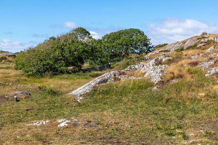 Rocks and vegetation in Carraroe, Conemara, Galway, Ireland Banco de Imagens