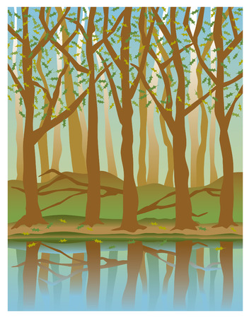 brook: Illustration of trees reflected in water in Springtime.