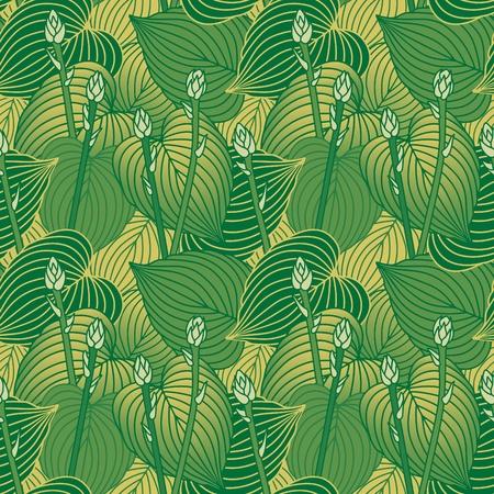 Seamless pattern of budding Hosta plants  Vector