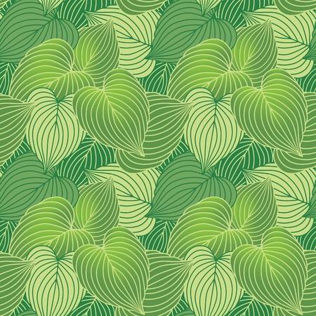ギボウシの緑の植物のシームレスなパターン ベクトル。