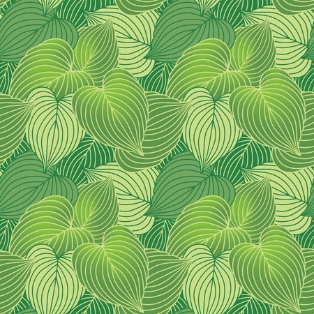 Vector seamless pattern of green Hosta plants.  Vettoriali