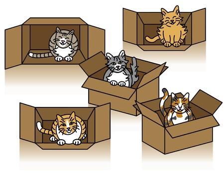 Vectorillustratie van vijf schattige katten spelen in kartonnen doosjes.