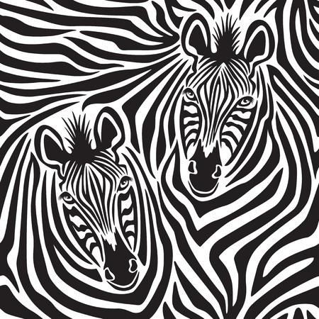 cebra: patrón de un Pareja Zebra repite a la perfección