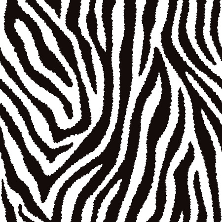 striping: Zebra fur texture pattern repeats seamlessly.