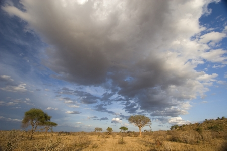 south africa soil: Spectacular clouds over Tsavo East plains, Kenya Stock Photo