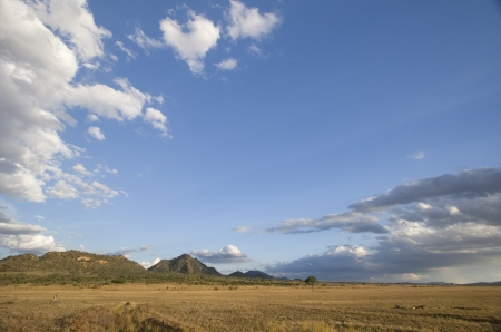 Open plains of Tsavo East National Park, Kenya photo