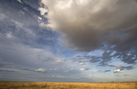 Afternoon sun & spectacular clouds over plains of Tsavo East, Kenya Stock Photo