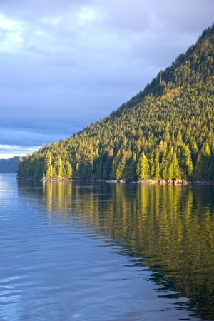 british columbia: Forest reflecting into the channel, Queen Charlotte Strait, British Columbia, Canada