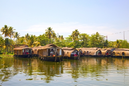 Traditional house boats moored along the banks of the canal in the backwaters near Alleppey, Kerala, India