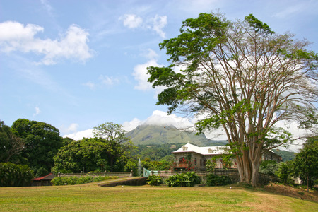 martinique: Martinique landscape with a plantation house   volcano