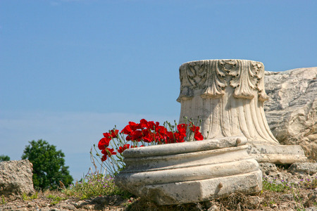 peloponnese: Top of a Corintian marble column with beautiful red poppys growing around it. Ancient Corinth, Greece.