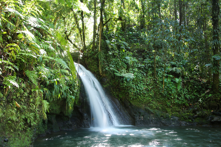 Crayfish Waterfall or La Cascade aux Ecrevisses, Guadeloupe National Park, Guadeloupe, French West Indies. 스톡 콘텐츠