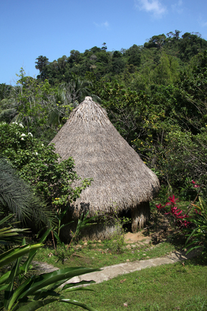 Traditional thatched building with a straw roof, of the indiginous people of Colombia, South America. Фото со стока - 116920389