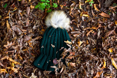 Green woolly hat in autumn leaves Stock fotó