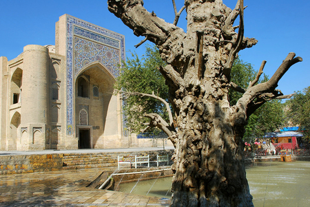 divan: Lyabi Hauz y Nodir Divan Begi madraza. Uzbekistán Foto de archivo