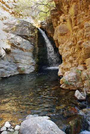 Mountain stream with waterfall in the mountains of Tien Shan. Uzbekistan