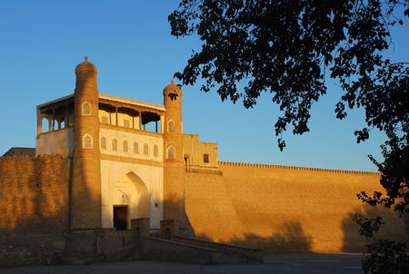 ark: Ark fortress in Bukhara at sunset and foliage. Uzbekistan