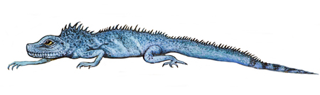 Drawing paint - blue lizard crawls on a white background
