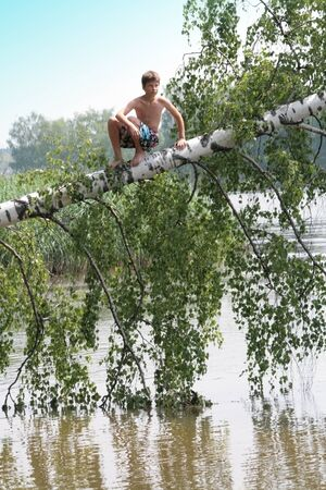 A 12-year-old boy climbed a fallen birch into a river. Russian child in nature