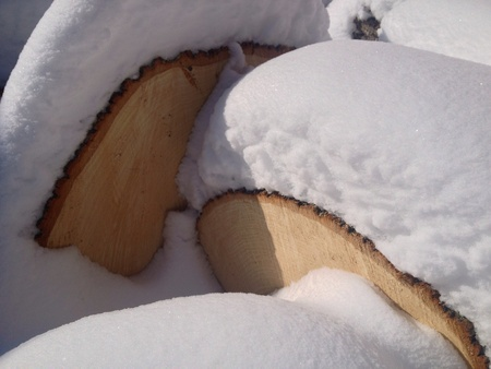 Snow covered logs in a wood pile Stock Photo