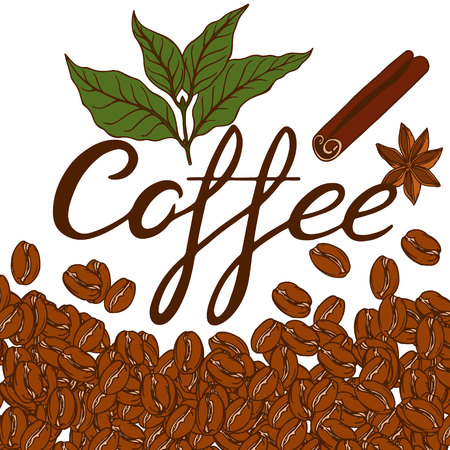 coffee grading with coffee beans background