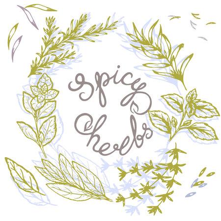 modello logo di erbe piccanti con scritte in stile retrò, illustrazione vettoriale, cartolina Logo