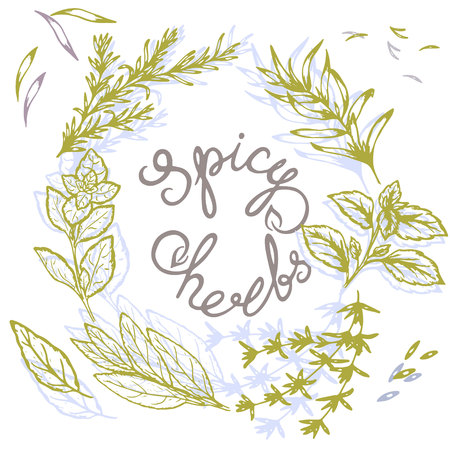 logo pattern of spicy herbs with lettering in retro style, vector illustration, postcard