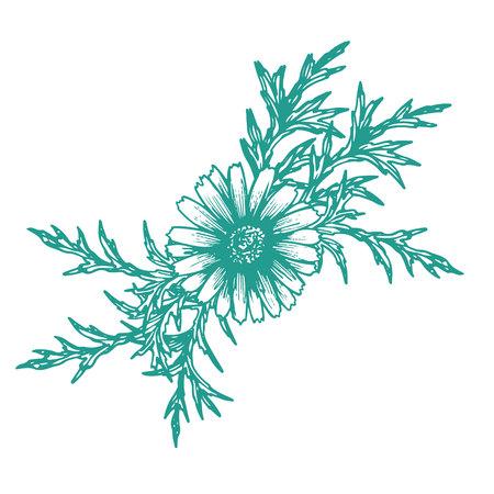 Logo-Naturkollektion, handgezeichnet in Skizzenstilen, Vektorillustration, weißer Hintergrund, Bio-Produkt Logo