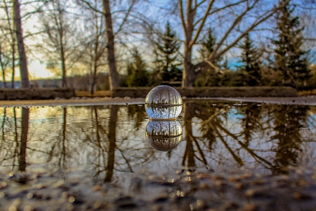 Lensball Puddle Reflections