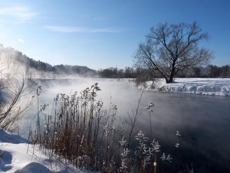 Río y los árboles congelados en la mañana de invierno en Rusia Foto de archivo