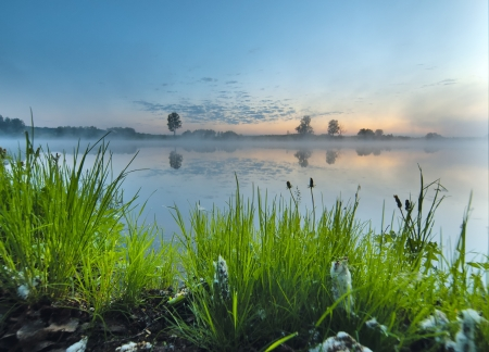 Early summer morning on a tranquil lake  photo