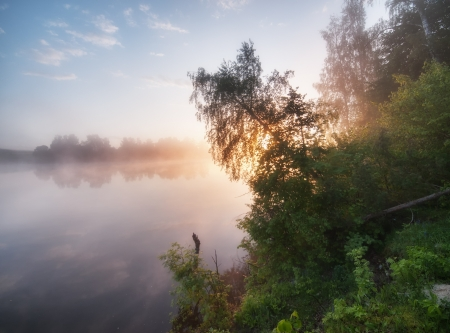 Early summer morning on a tranquil lake. photo