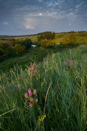Natural colours summer sunrise over fields and hills in Russia photo