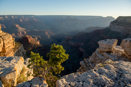 toroweap: Sunset on a south rim of the Grand Canyond, USA.