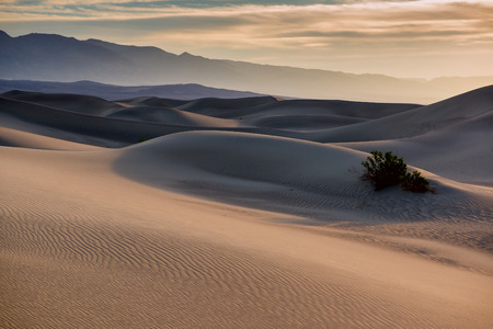 orange sunset: Mesquite flat sand dunes at sunrise. Death Valley NP, California. Stock Photo