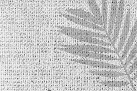 Palm tree leaf shadow isolated on white textile